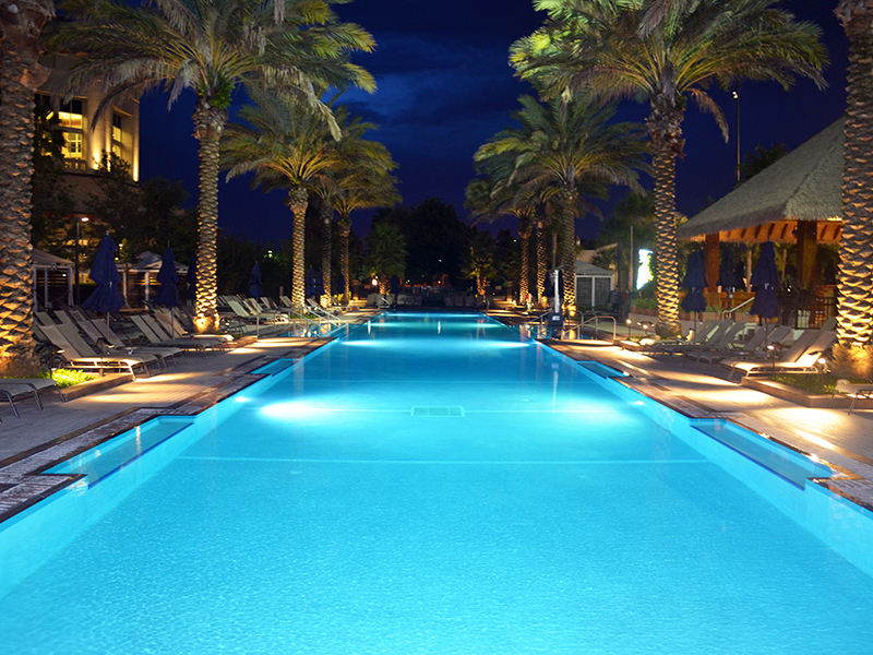 A pool with palm trees on the side at night at Gaylord Palms