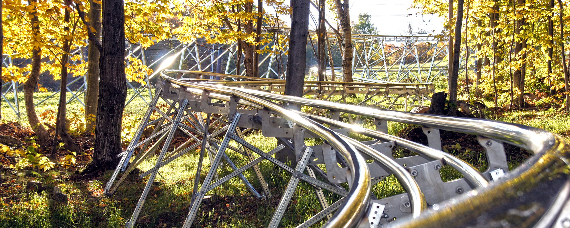Mountain Coaster Tracks winding through trees with yellow leaves