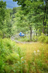 Mountain Coaster Break System