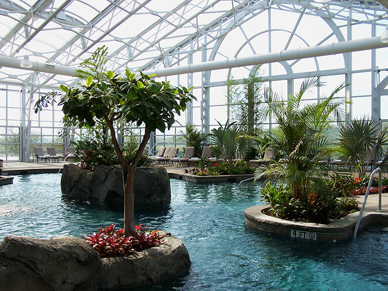 Pool with trees around it under a texlon roof
