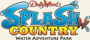 Dollywood's Logo