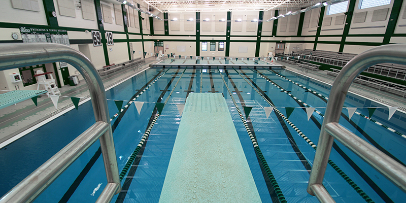Shen Pool Overview from Diving Board