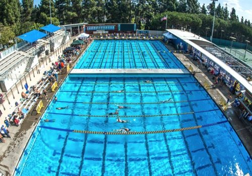 UCLA_Pool_featured