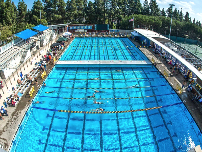 UCLA_Pool_featured