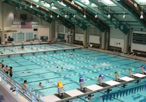 Pool at Asphalt Green