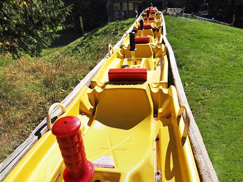 Alpine Slide Carts