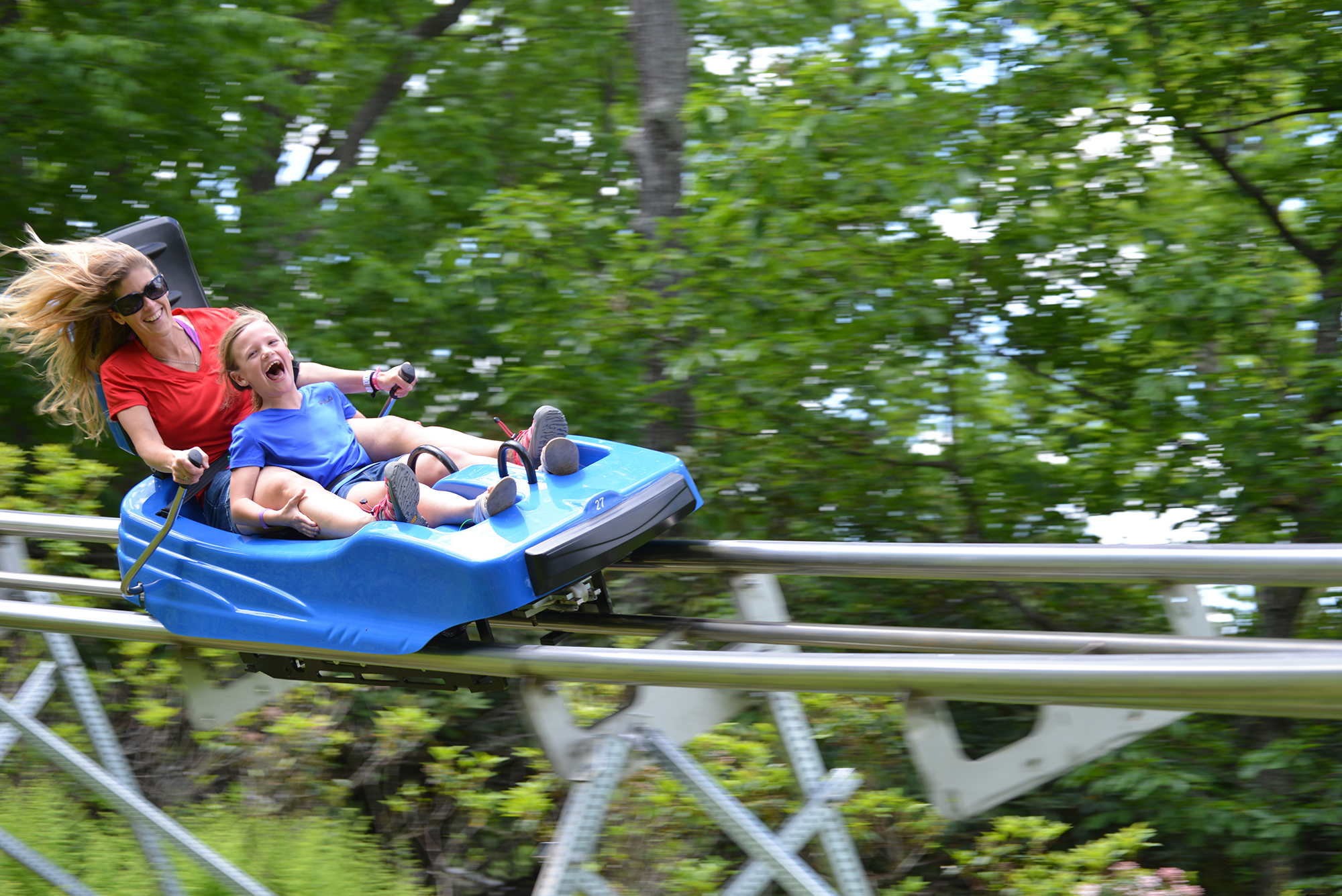 adg mountain coaster