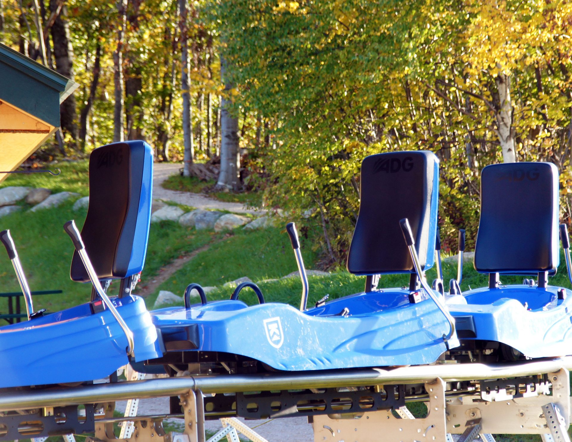 adg mountain coaster carts