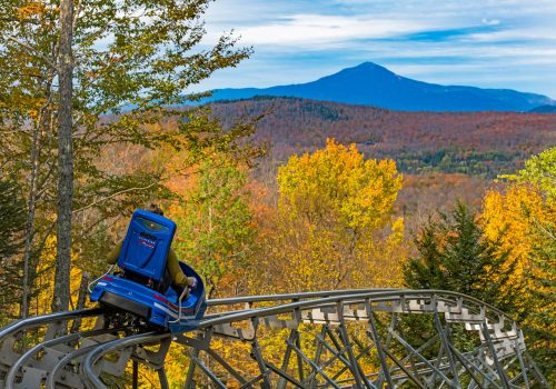 alpine mountain coaster lake placid