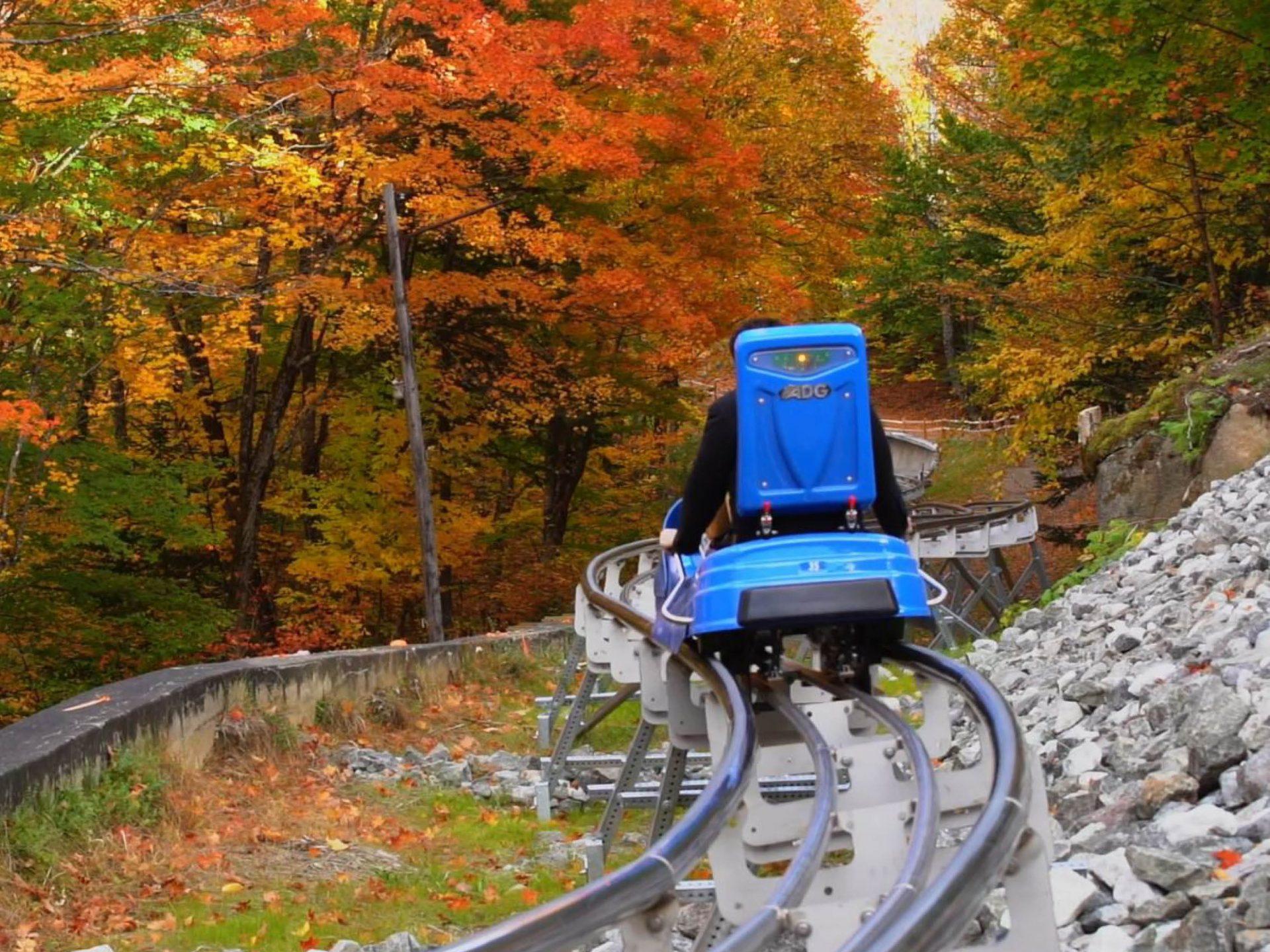 lake placid mountain coaster